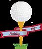 Golfball-PinItUp